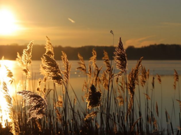 Sonnenuntergang Scharmützelsee
