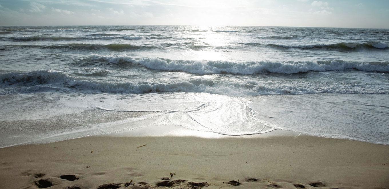 Wellen Nordsee
