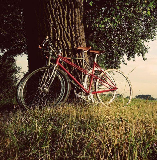 Düsseldorf Fahrräder