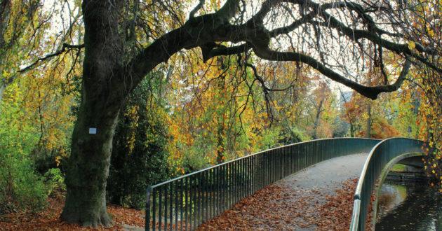 Düsseldorf Waldbrücke