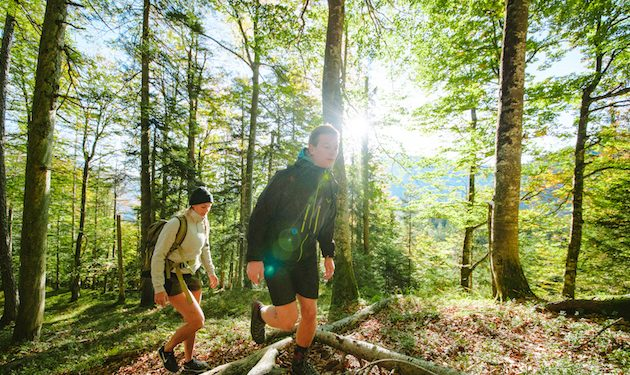 Ruhpolding Waldwanderung