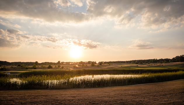Bad Saarow Landschaft