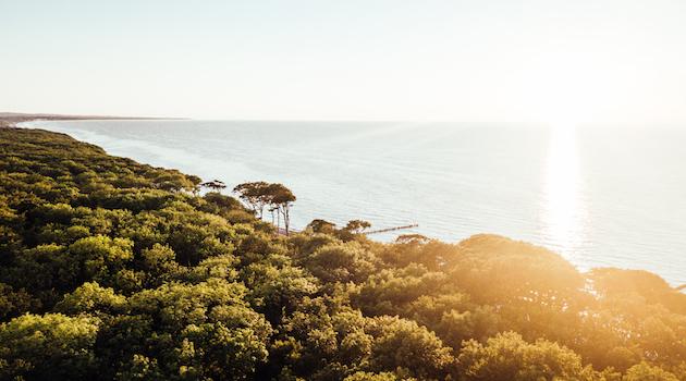 Nordsee Landschaft Meer