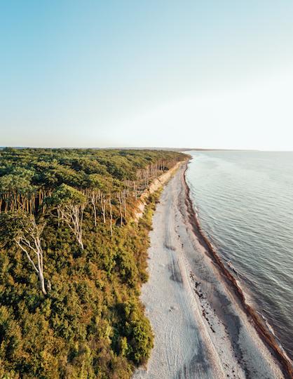 Nordsee, Meer, Strand, Wald