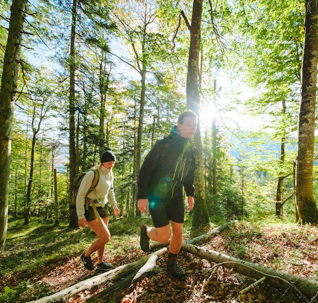 Waldwanderung Ruhpolding